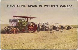 Harvesting Grain In Western CANADA CPA Animée Avec Tracteur En Premier Plan. - Canada