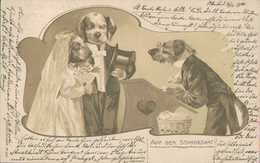 Dackel, Wir Feiern Hochzeit, Künstler-Postkarte, Zeichner Unsigniert - Illustrators & Photographers