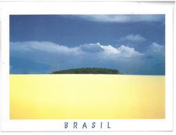 Brasile Brasil Delta Do Rio Parnaiba, Piggi Non Viaggiata Condizioni Come Da Scansione - Brasile