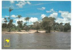 Brasile Brasil Manaus Paisagem Tipica Margem Do Rio Negro Typical Landscape Bank Of Negro River Non Viaggiata Condizioni - Manaus