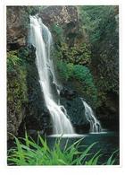 U.S.A. Stati Uniti D'America On The Road To Hana One Of Maui S. Many Waterfalls Non Viaggiata Condizioni Come Da Scansio - Stati Uniti