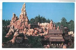 U.S.A. Stati Uniti D'America Disneyland The Wildest Ride In The Wilderness Non Viaggiata Condizioni Come Da Scansione - Anaheim