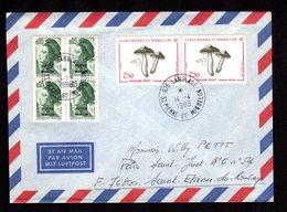 SAINT PIERRE MIQUELON Lettre 5,20F Champ. + Marianne Surch 0,05F X 4 Au Tarif Surtaxe Aérienne  50gr LANGLADE 14-4-1989 - Lettres & Documents