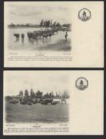 Conjunto De 2 Postais Antigos GOLLEGA Alverca / Campos GOLEGÃ (Santarem) PORTUGAL 1900s - Santarem