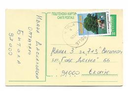 Macedonia Post Card Population Census Stamp - Macedonia