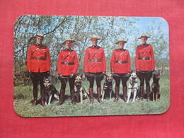 Royal Canadian Mounted Police   With Their World Famous Dogs Trained For Police Work          Ref 3333 - Police - Gendarmerie