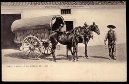 CARRO ALENTEJANO Alentejo / Carro De Mulas / Churriao. Old Postcard TIPYCAL MULE CART (Evora) PORTUGAL 1900s - Evora