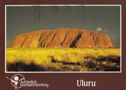 Postcard Uluru Northern Territory PU Canberra 1990  My Ref  B23593 - Uluru & The Olgas