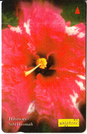 MALAYSIA(GPT) - Flower, Hibiscus/Siti Hasmah(RM50), CN : 124USBE, Used - Malaysia