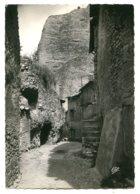 04190 LES MÉES - Une Rue Rustique - CPSM 10,5x15 Réal-photo - Francia