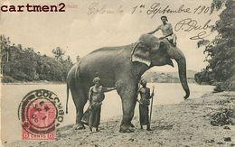 SRI-LANKA CEYLAN ELEPHANT CEYLON INDE INDIA COLOMBO - Sri Lanka (Ceylon)