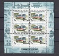 RUSSIA  1996 Small Sheet MINr. 498 MNH (**) - 1992-.... Federazione