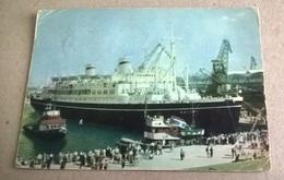 M/S BATORV GDYNIA (293) - Barche
