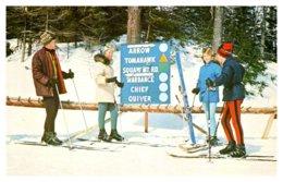Vermont  Ludlow , Okemo Mountain Ski Mountain , Skiers - United States