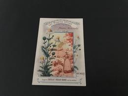 CHOCOLAT POULAIN ORANGE - Les Plantes Utiles - Plantes Medicinales - CAMOMILLE - Chromo - Poulain