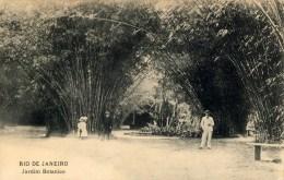 Rio, Jardim Botanico - Rio De Janeiro