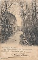 CPA - Belgique - Brussels - Bruxelles - La Vallée De Josaphat - A La Fontaine D'amour - Forêts, Parcs, Jardins