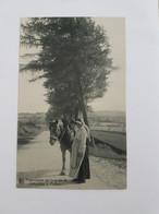 A 1496 - Ardennaise Sur La Route De Jehanster à Polleur - Theux