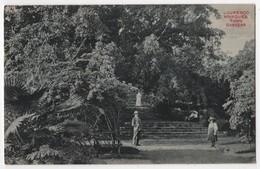 MOCAMBIQUE LOURENÇO MARQUES - Town Gardens - Mozambique