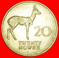 + GREAT BRITAIN: ZAMBIA ★ 20 NGWEE 1972! LOW START ★ NO RESERVE! - Zambia