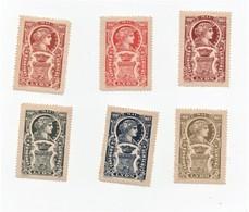 Erinnophilie Vignette Concours Agricole Lyon 1907 (6 Vignettes) - Erinofilia
