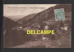 DD / 70 HAUTE SAÔNE / BELFAHY / LES MARTINS - Autres Communes