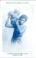 OCEANIE - FIDJI -- Cueillette Du Fruit De L'arbre à Pain - Fiji