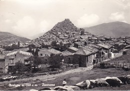 MESSINA MISTRETTA PANORAMA   VIAGGIATA - Messina