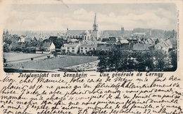 TOTALANSICHT VON SENNHEIM // Vue Général De CERNAY - Cernay