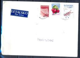 K644- Postal Used Cover. Posted From Slovenija Slovenia To Pakistan. Fruit. - Slovenia