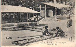 OCEANIE - VANATU - NOUVELLES HEBRIDES - Séchant Le Coprah - Vanuatu
