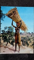 CPSM L AFRIQUE EN COULEURS PORTEUSE DE FAGOTS AUX SEINS NUS ED IRIS HAO QUI 5521 - Ohne Zuordnung