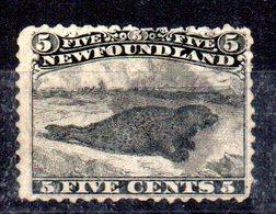 Sello Nº 29  Newfoundland - Newfoundland