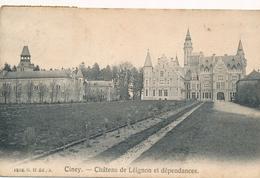 CPA - Belgique - Ciney - Château De Leignon Et Dépendances - Ciney