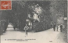 Carte Postale Ancienne Du Pouliguen L'avenue Des Ormes Et Des Lilas - Le Pouliguen