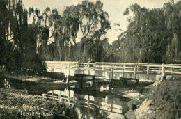 AUSTRALIA - Willow Bridge TENTERFIELD - RPPC -  HV & R Harris Solicitors Advertising Postcard - Australia