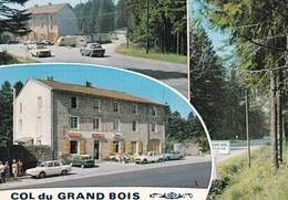 COL DU GRAND BOIS/HOTEL DU GRAND BOIS/LA VERSANNE (dil122) - Autres Communes