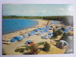 CP (29) Finistère - LOCQUIREC - La Plage Des Sapins - Locquirec