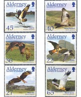 Ref. 93901 * MNH * - ALDERNEY. 2002. MIGRATORY BIRDS . AVES MIGRATORIAS - Alderney