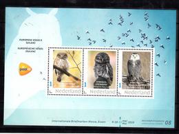 Nederland Persoonlijke Zegel PostNL Beurszegel 08, Europeesche Vogels, Bird, Uil, Owl - Periode 2013-... (Willem-Alexander)