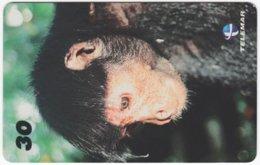 BRASIL I-010 Magnetic Telemar - Animal, Monkey - Used - Brasilien