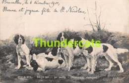 CPA PHOTO SALON DE PARIS 1901 FAUVEL CH EPAGNEULS FRANCAIS CHIEN DE CHASSE HUNTING DOG - Musées