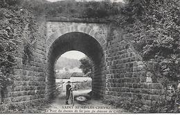 SAINT REMY Les CHEVREUSE ( 78 ) - Le Pont Du Chemin De Fer , Près Du Château De Coubertin - St.-Rémy-lès-Chevreuse