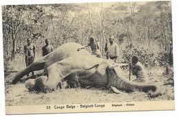 CONGO BELGE - Eléphant - Chasse...  Animé  (Carte-Entier N°53 -10 Cts) - Congo Belge - Autres
