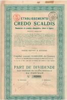 Titre Ancien - Etablissements Credo Scaldis - Manufacture De Produirts Alimentaires, Tabacs Et Cigares - Titre De 1920 - Actions & Titres