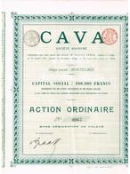 Titre Ancien - CAVA Société Anonyme - Montegnée - Titre De 1911 - Actions & Titres