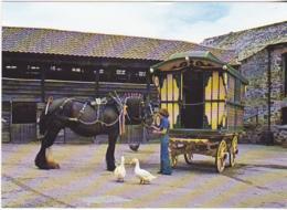 Postcard - Romany Caravan And Shire-Mare At Bickleigh Mill Farm, Nr. Tiverton, Devon - Card No. C5354X - VG - Postales