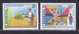 SENEGAL N°  510 & 511 ** MNH Neufs Sans Charnière, TB (D8957) Conscience Professionnelle - 1979 - Senegal (1960-...)
