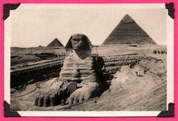 Petite Photo - Mignonnette - Chromo - Egypte - Le Caire - Cairo - The Excavated Sphinx - Animée - 9 X 6 Cm - Le Caire