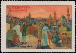 Braunschweig: Leben In Ägypten IV Reklamemarke - Erinnophilie